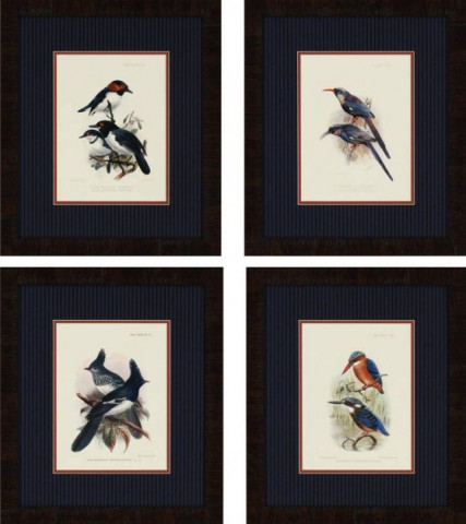 Birds of Nature (Priced Separately)