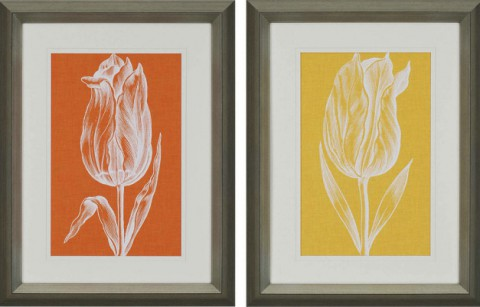 Chromatic Tulips III & IV (Priced Separately)